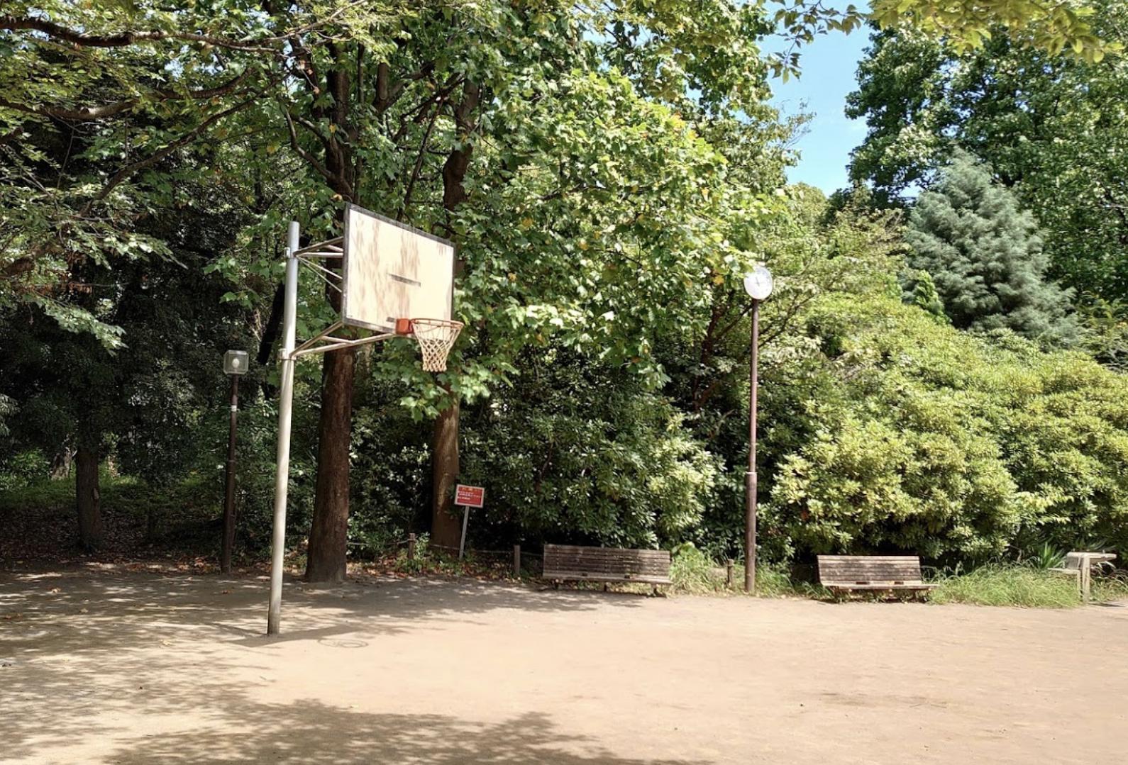 しながわ区民公園のゴール