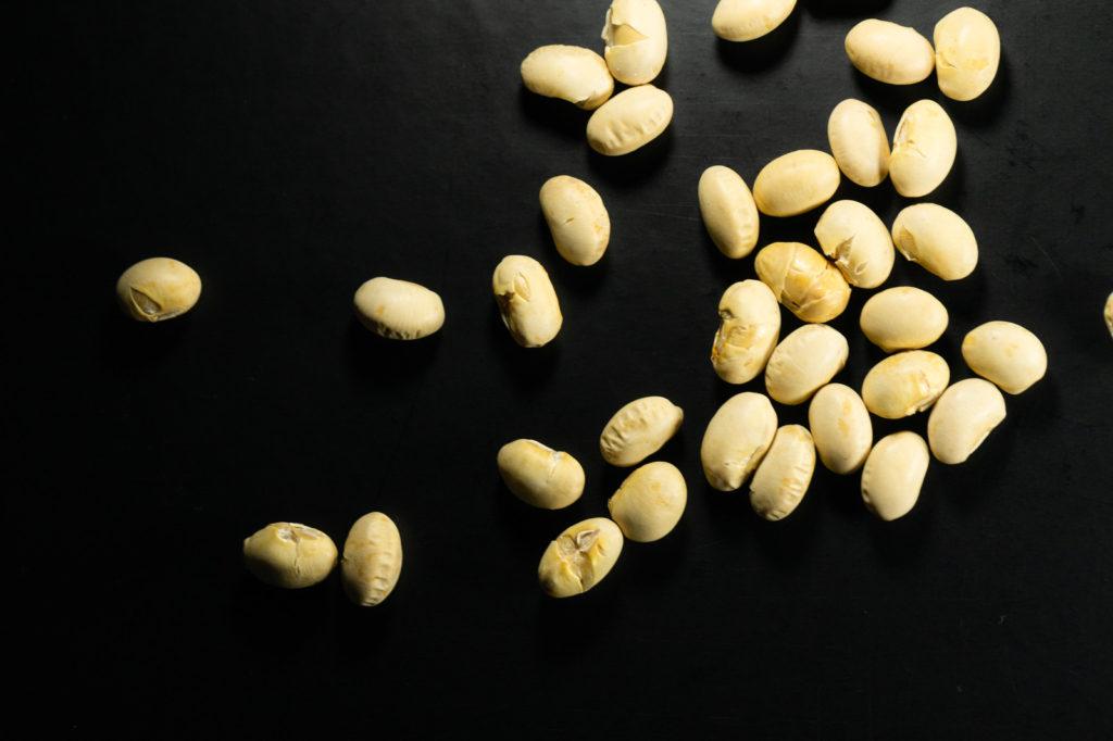ソイプロテインの主成分である大豆