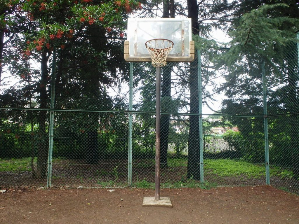 めじろ台東公園バスケットゴール