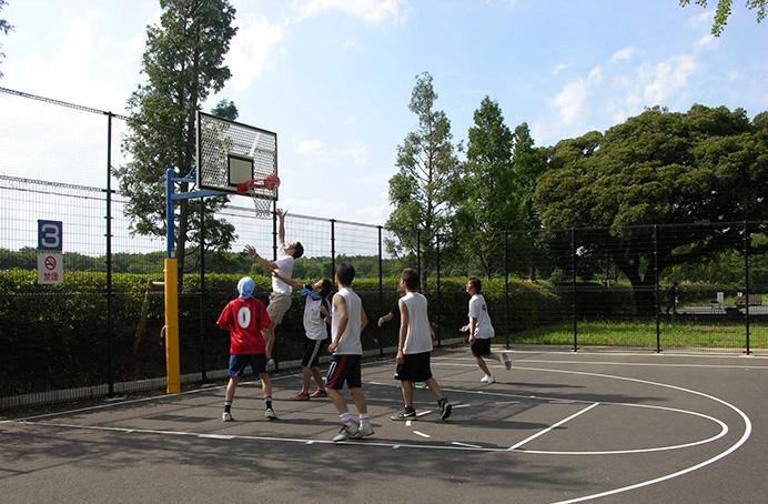 昭和記念公園バスケットゴール