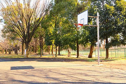 神代植物公園バスケットゴール