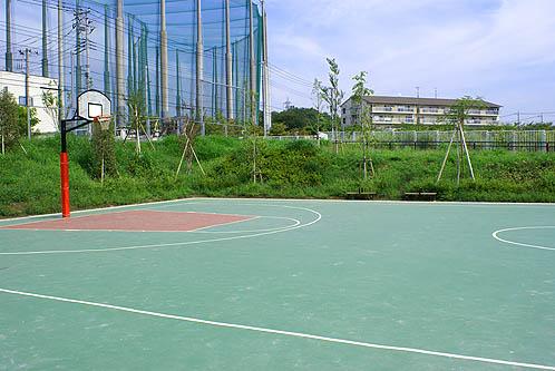 大谷口公園バスケットゴール